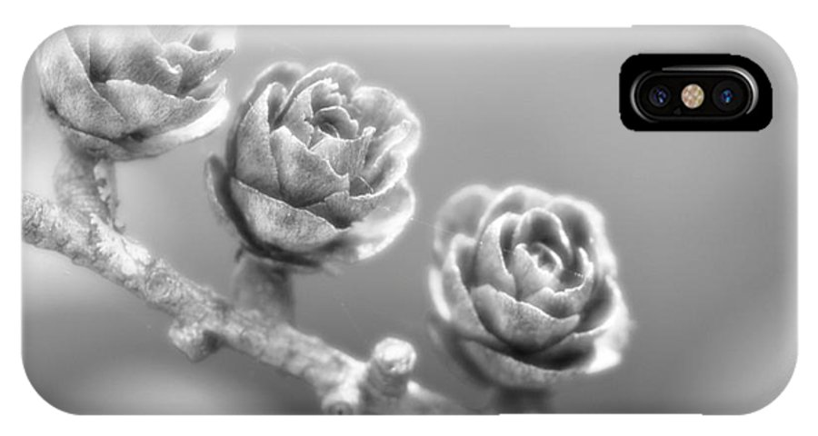 Festblues IPhone X Case featuring the photograph Silver Lining.... by Nina Stavlund