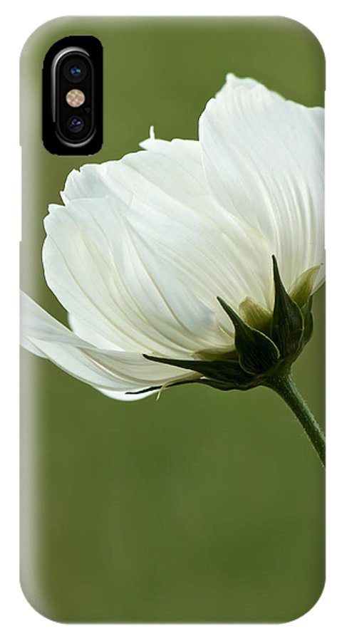 Flower IPhone X Case featuring the photograph Simply Beautiful by Penny Meyers
