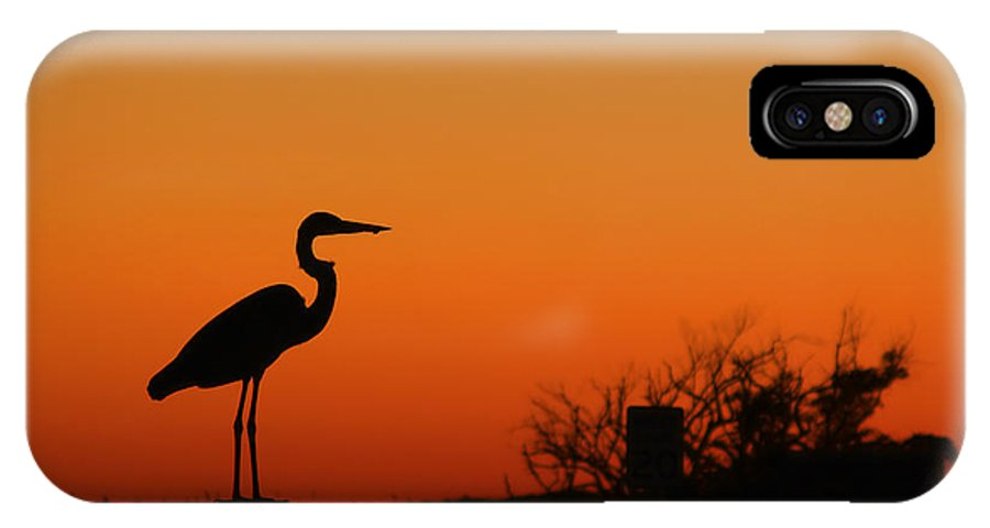 Bird IPhone X Case featuring the photograph Simply Silhouette by Teresa Dunlap