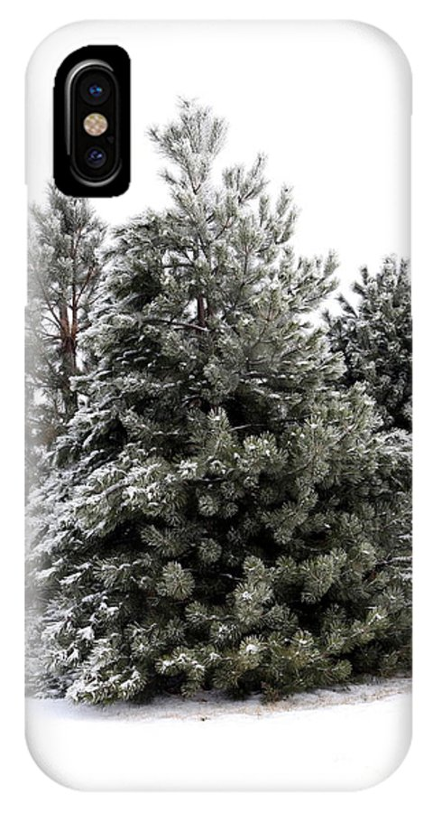 Winter IPhone X Case featuring the photograph Simply Winter by Sophie Vigneault