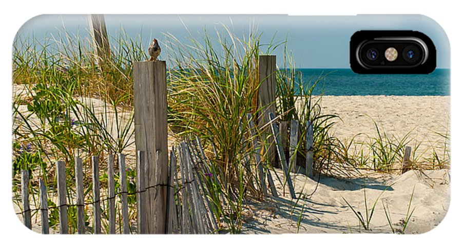 Bird IPhone X Case featuring the photograph Singer At The Shore by Michelle Constantine