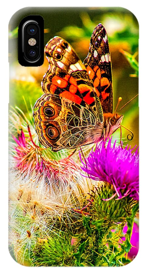 Animal IPhone X Case featuring the photograph Skyline Butterfly by Nick Zelinsky