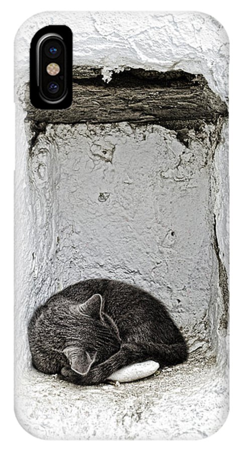 Cat IPhone X Case featuring the photograph Sleeping Cat by Paul and Helen Woodford