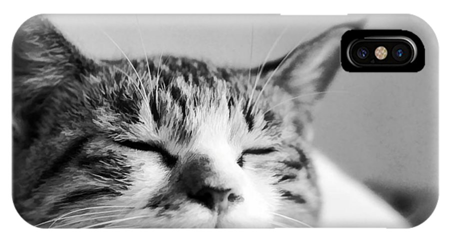 Cat IPhone X Case featuring the photograph Sleeping Cat by Sanjeewa Marasinghe