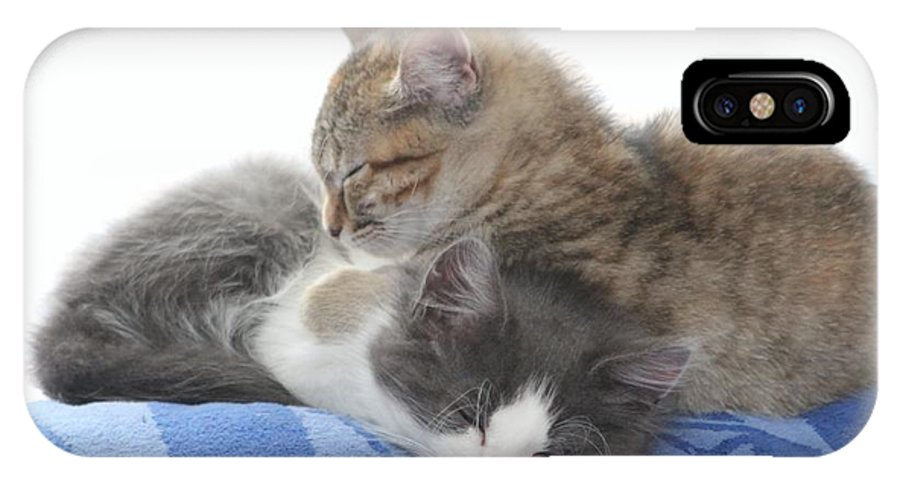 Kitty IPhone X Case featuring the photograph Sleeping Kittens by Michelle Powell