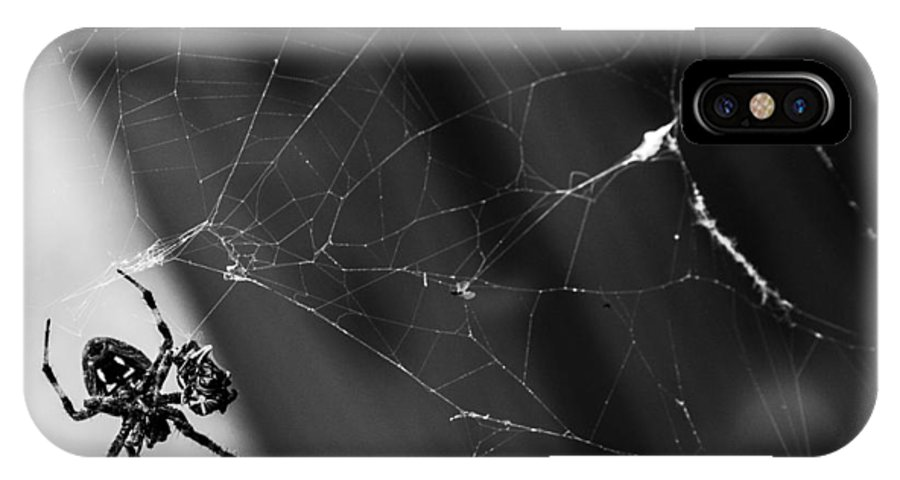 Spider IPhone X Case featuring the photograph Smiley Spidey by Sheri Bartoszek