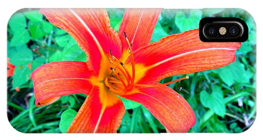 Wild IPhone X Case featuring the photograph Smokie Mountian Wild Flower by Walter Rickard