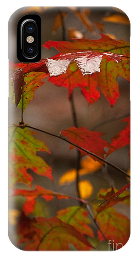 IPhone X Case featuring the photograph Smoky Mountain Color II by Douglas Stucky