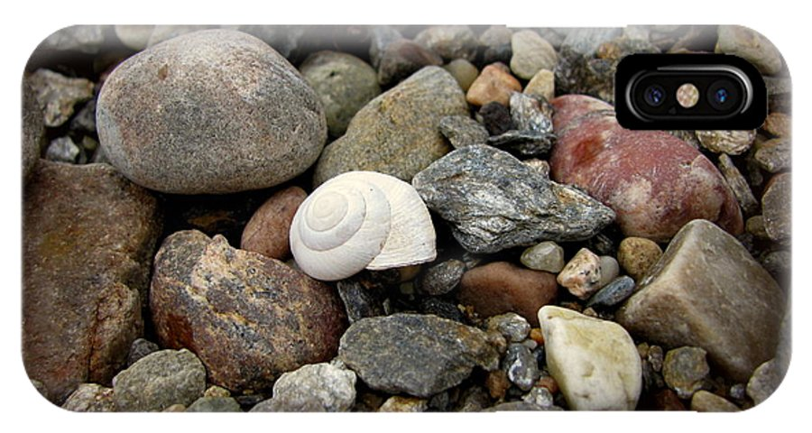 Snail IPhone X Case featuring the photograph Snail Among The Rocks by Leone Lund