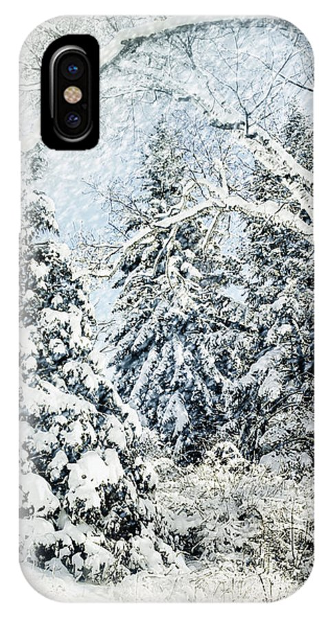 Winter IPhone X Case featuring the photograph Snow Covered by Elaine Manley