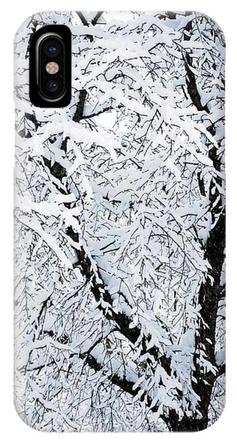 Snow IPhone X Case featuring the photograph Snow Tree by Mary Beth Landis