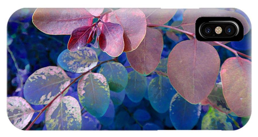 Blue IPhone X Case featuring the photograph Snowbush Blue by Ginny Schmidt