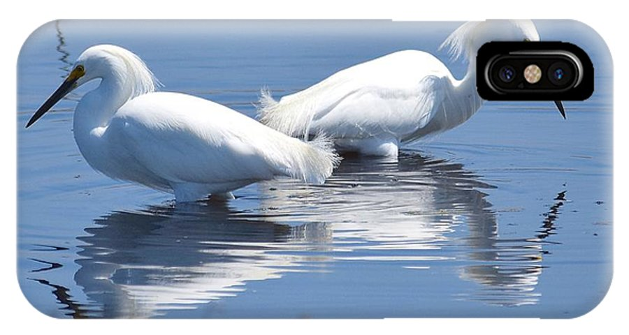 Snowy Egrets IPhone X / XS Case featuring the photograph Snowy Egrets With Reflection by MCM Photography