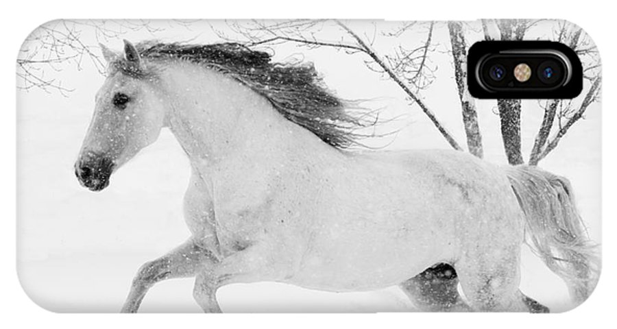 Andalusian IPhone X Case featuring the photograph Snowy Mare Leaps by Carol Walker