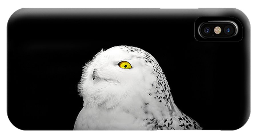 Animal IPhone X Case featuring the photograph Snowy Owl by Peter Lakomy