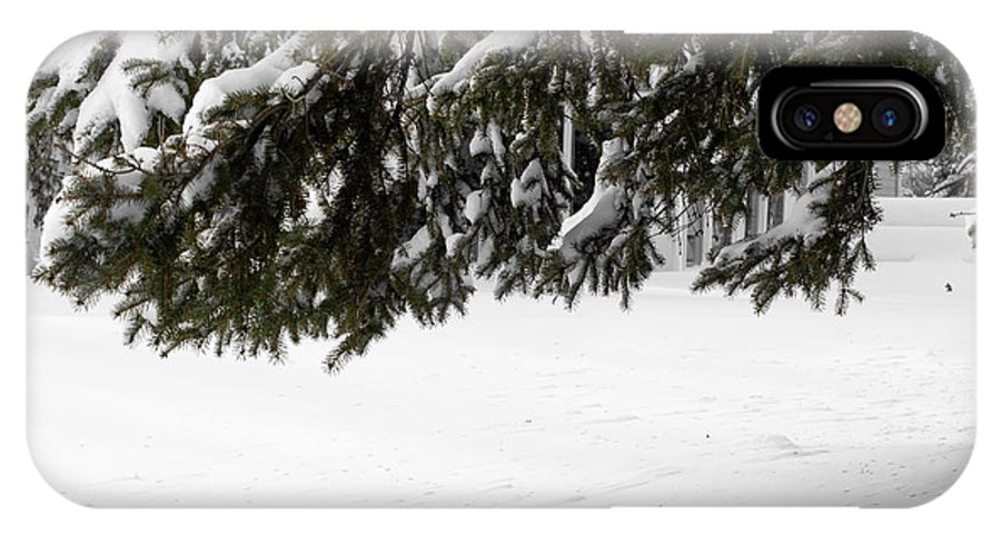 Snow IPhone X Case featuring the photograph Snowy Tree Branches by Tara Lynn
