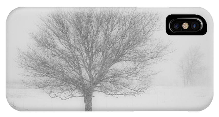Tree IPhone X Case featuring the photograph Snowy Tree by Scott Sewell