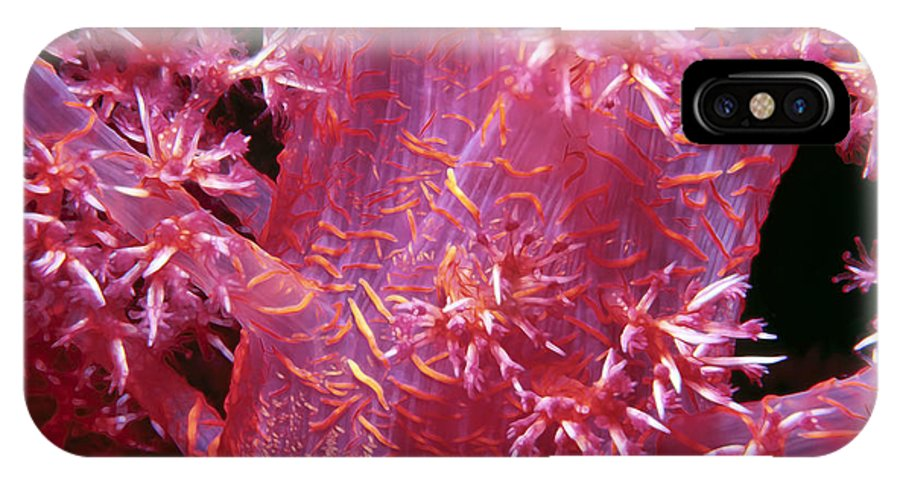 Micronesia IPhone X Case featuring the photograph Soft Corals 8 by Dawn Eshelman