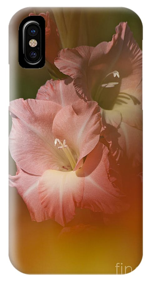 Gladiolus IPhone X Case featuring the photograph Soft Gladiolus by Heiko Koehrer-Wagner