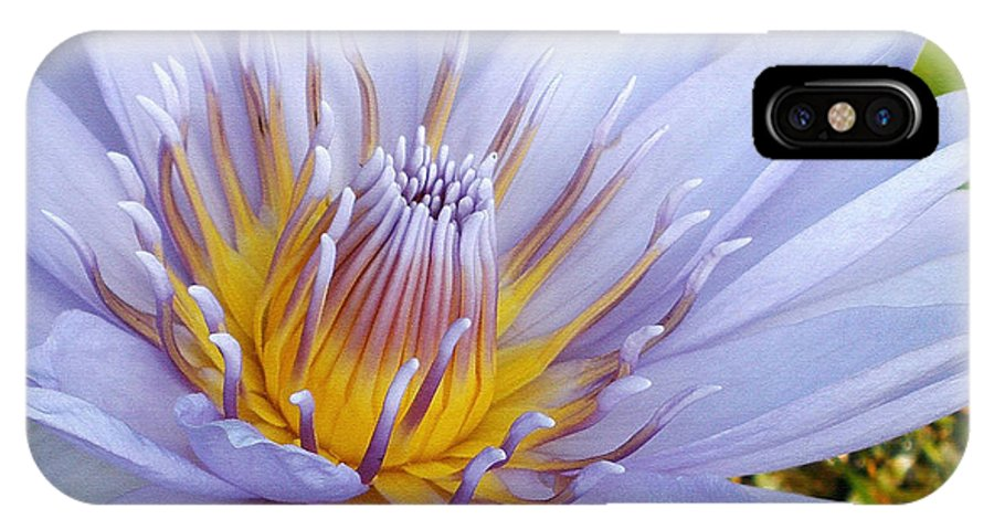 Photography IPhone X / XS Case featuring the photograph Soft Mauve Waterlily by Kaye Menner