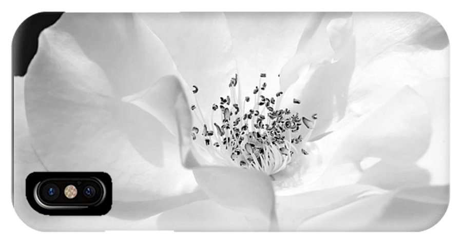 Rose IPhone X Case featuring the photograph Soft Petal Rose In Black And White by Jennie Marie Schell