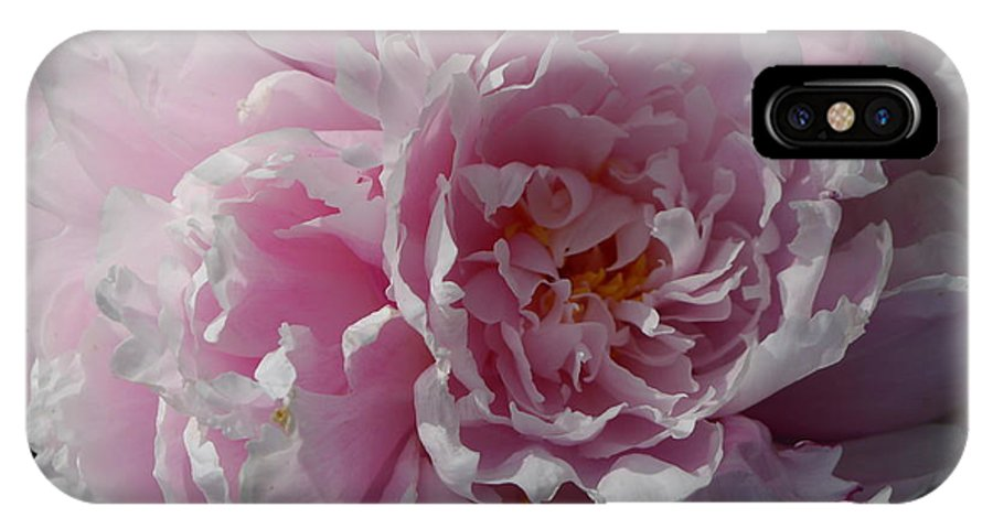 European Peony IPhone X Case featuring the photograph Soft Shades by Christiane Schulze Art And Photography