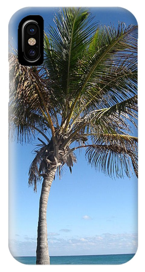 Palm Tree IPhone X Case featuring the photograph Sole Palm by Catie Canetti