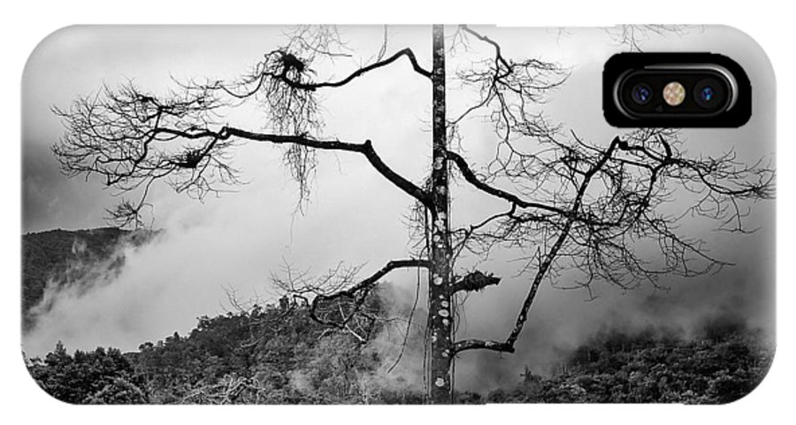 Cameron Highlands IPhone X Case featuring the photograph Solitary Tree by Dave Bowman