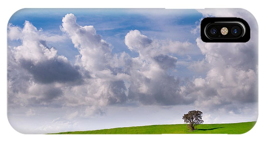 Trees IPhone X Case featuring the photograph Solitary Trees by Marco Bentivoglio
