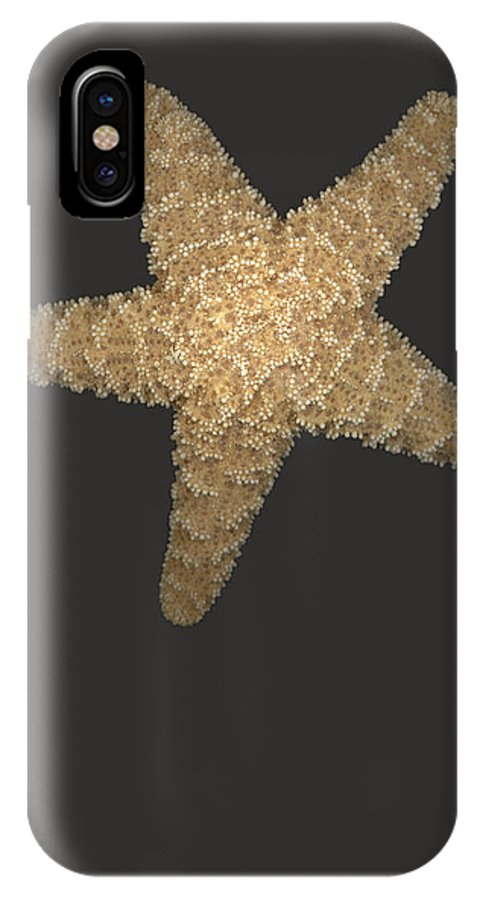 Starfish IPhone X Case featuring the photograph Solo Starfish I by Suzanne Gaff