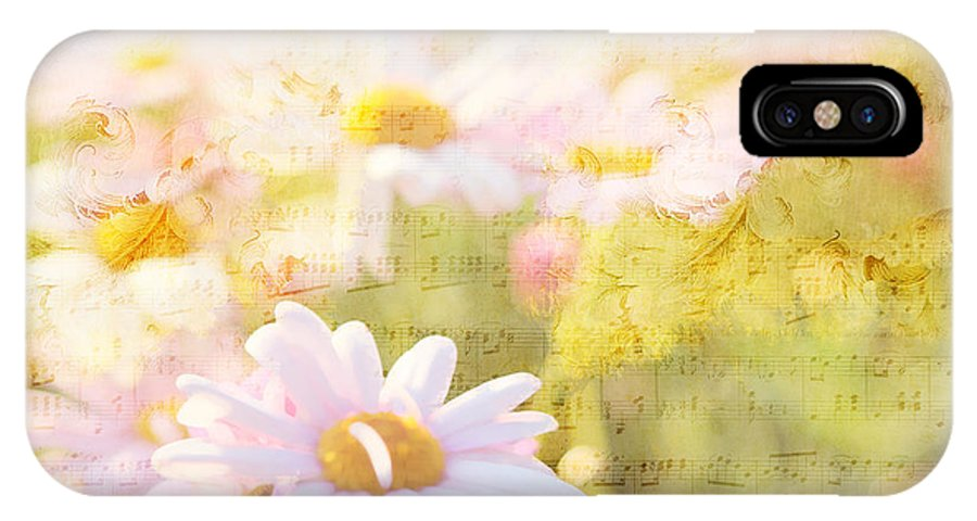 Daisy IPhone X Case featuring the photograph Song Of Spring I - Lovely Soft Pink Daisies by Beverly Claire Kaiya