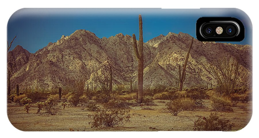 Arizona IPhone X Case featuring the photograph Sonoran Desert by Robert Bales