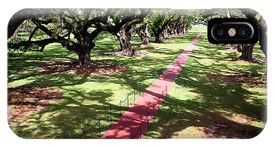 Live Oak Trees IPhone X Case featuring the photograph Southern Shadows by Rhonda Burger
