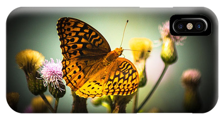 Butterfly IPhone X Case featuring the photograph Spangled Fritillary by Jason Picard
