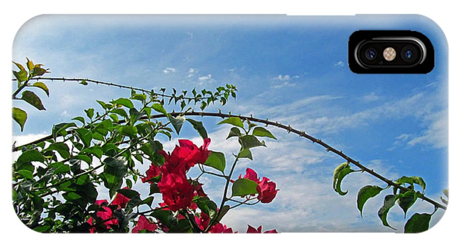 Flowers IPhone X Case featuring the photograph Spanish Bougainvillea by Tina M Wenger