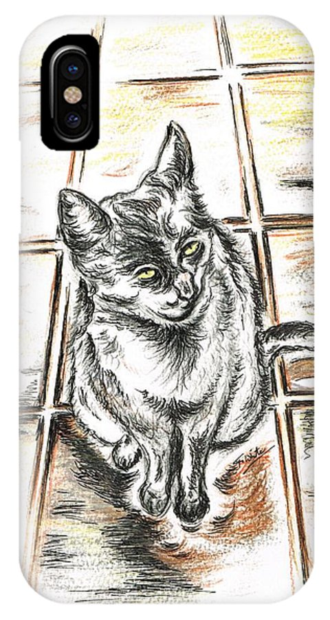 Teresa White IPhone X Case featuring the drawing Spanish Cat Waiting by Teresa White