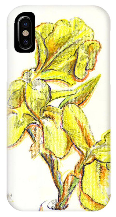 Spanish Irises IPhone X Case featuring the painting Spanish Irises by Kip DeVore