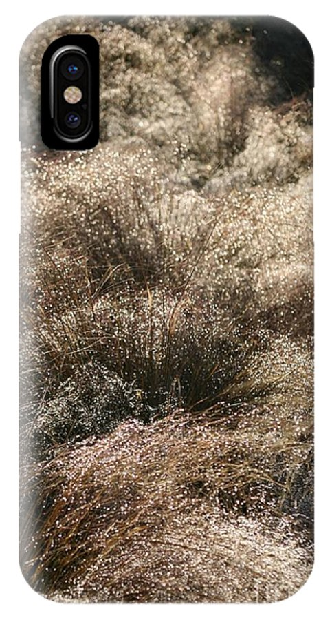 Grasses IPhone X Case featuring the photograph Sparkling Grasses by Nadine Rippelmeyer