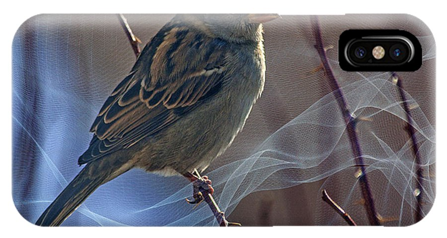 Sparrow IPhone X Case featuring the photograph Sparrow In A Weave by Janice Pariza