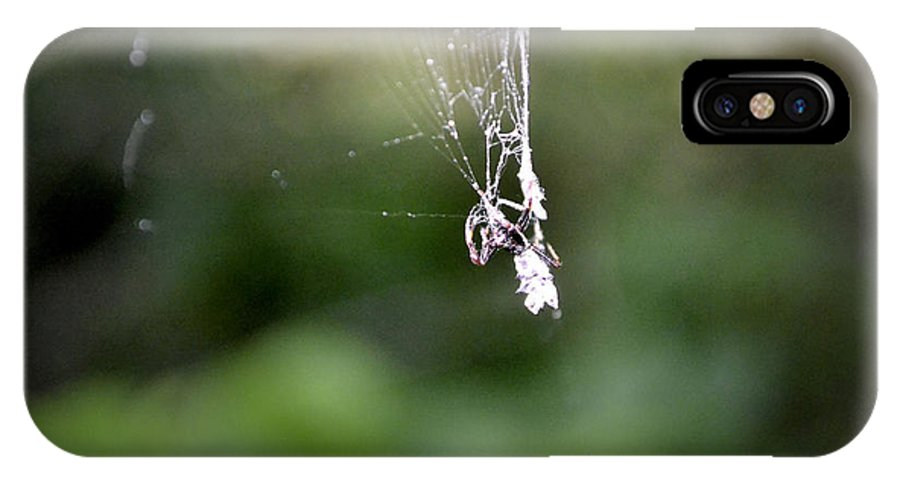Texas IPhone X Case featuring the photograph Spider by Richelle Munzon