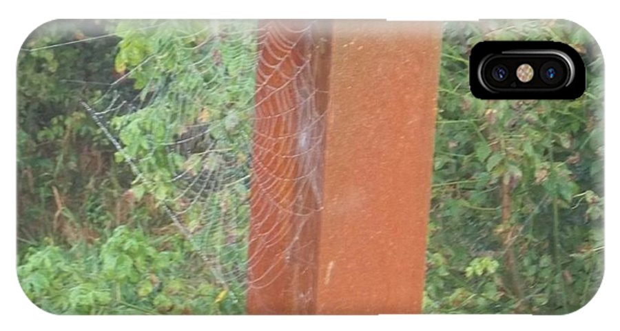 Spider Web IPhone X Case featuring the photograph Spider Web In Fall by Becky Jacquier