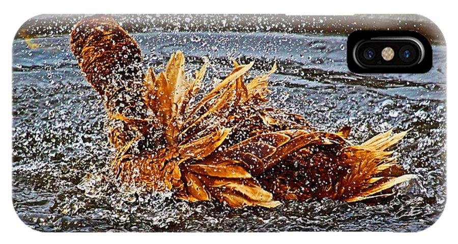 Animals IPhone X Case featuring the photograph Splish Splash by DVP Artography