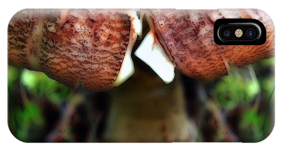 Mushroom IPhone X Case featuring the photograph Split Crown by Deena Athans