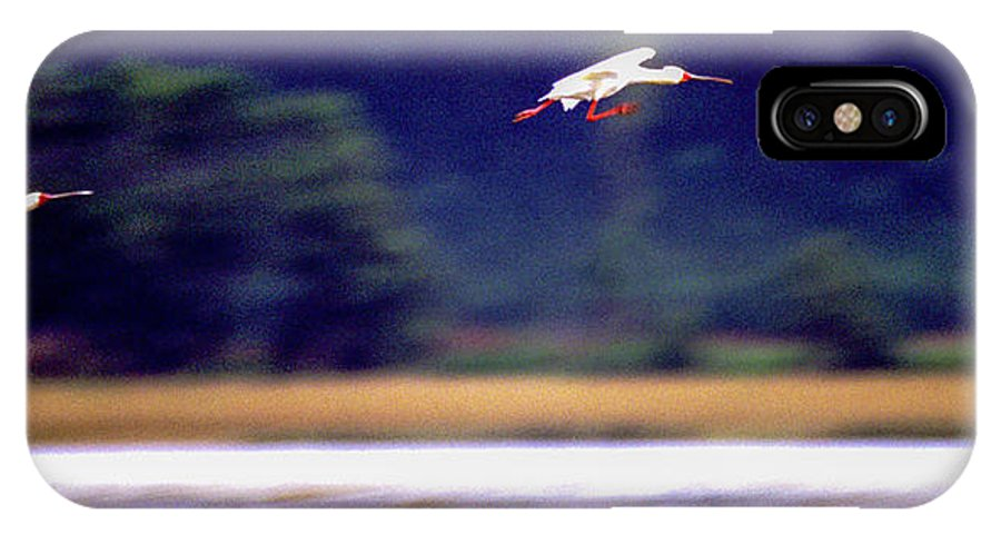 Africa IPhone X Case featuring the photograph Spoonbill Blur by Alistair Lyne