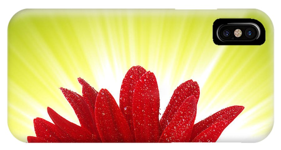 Abloom IPhone X Case featuring the photograph Spring Blossom by Carlos Caetano