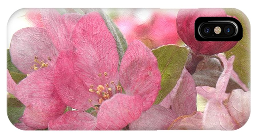Blossoms IPhone X / XS Case featuring the photograph Spring Blossoms by Annie Adkins