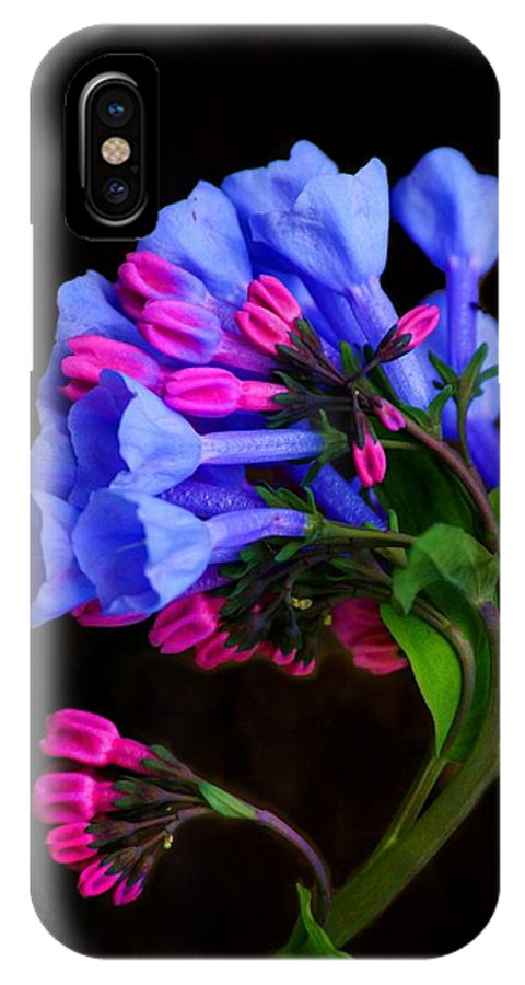 Flower IPhone X Case featuring the photograph Spring Bluebells by John Absher