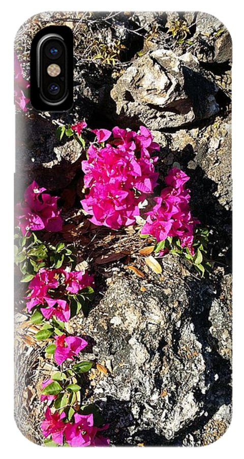 Bougainvillea IPhone X Case featuring the photograph Spring From Rocks by Cheryl Staruck