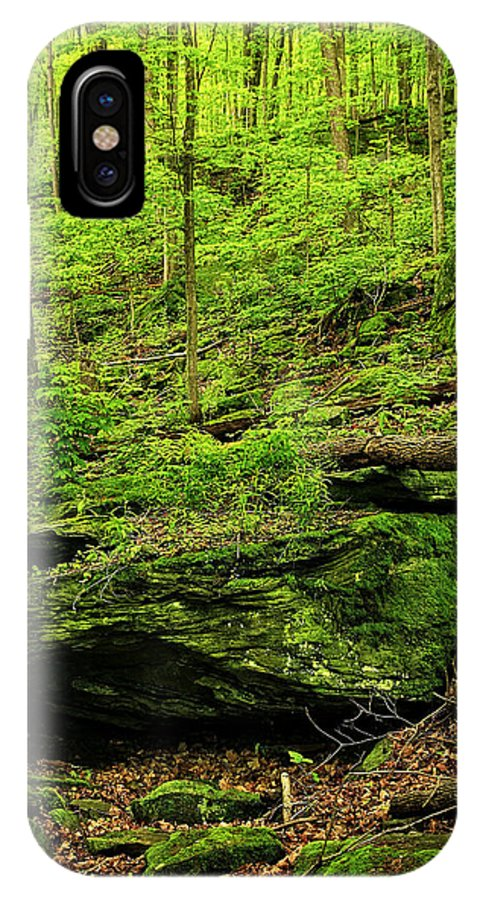 Canada IPhone X Case featuring the photograph Spring Green by Phill Doherty