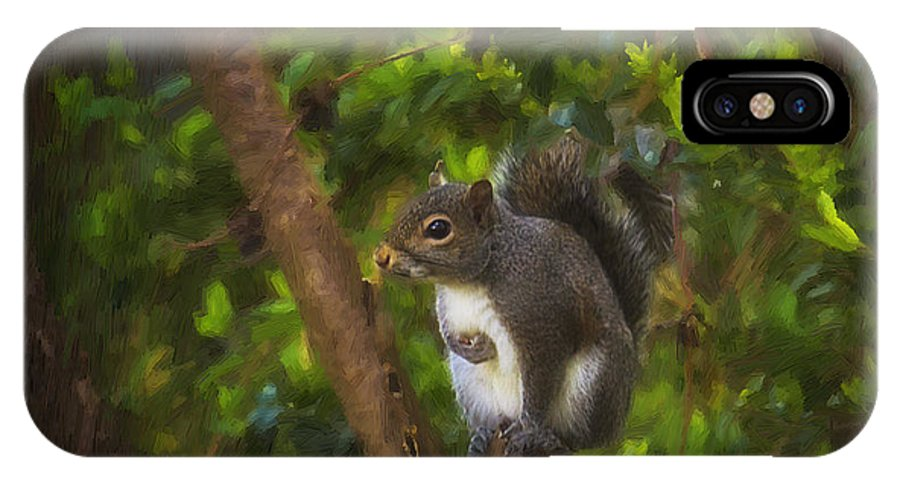 Wildlife IPhone X Case featuring the photograph Spring Has Sprung by Cris Hayes